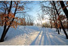 冬季护理新生儿应该注意什么?