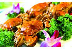 嘉堡服务:秋蟹正肥,孕妇能吃吗?